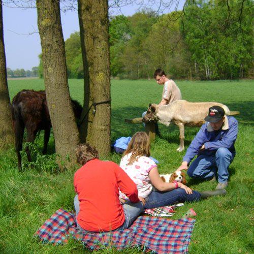 Zorgboerderij de Mettemaat